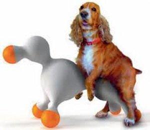 1216 Top 20 des accessoires pour chiens les plus insolites