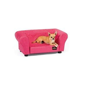714 Top 20 des accessoires pour chiens les plus insolites