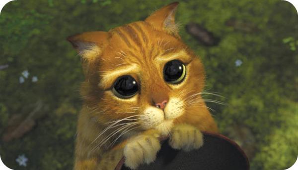 chat 5 Top 10 des chats les plus célèbres du cinéma