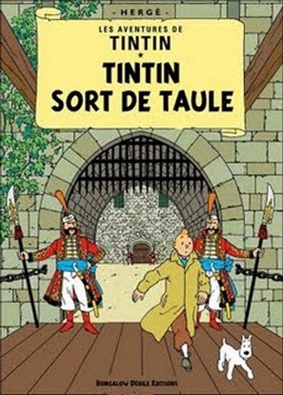 Tintinophiles s'abstenir... Tintin_parodie008